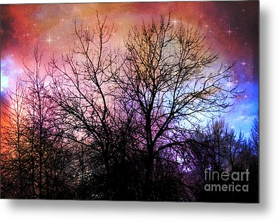 Metal Print featuring the photograph Starry Night by Sylvia Cook