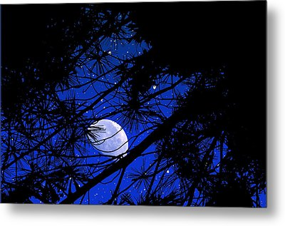 Metal Print featuring the photograph Starry Starry Night by Mike Flynn