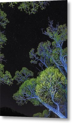 Stars Out Tonight Metal Print by Nancy Marie Ricketts