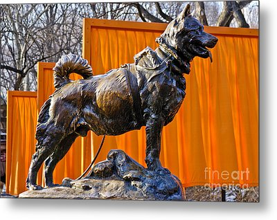 Statue Of Balto In Nyc Central Park Metal Print