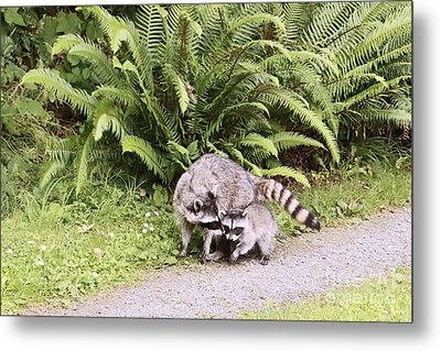 Stay Close And Run Fast  Metal Print by Kym Backland