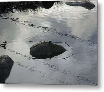 Metal Print featuring the photograph Stay In The Middle My Friend by Marie Neder
