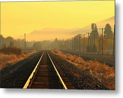 Metal Print featuring the photograph Stay On Track by Lynn Hopwood