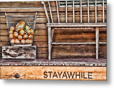 Stayawhile Metal Print by Diana Sainz