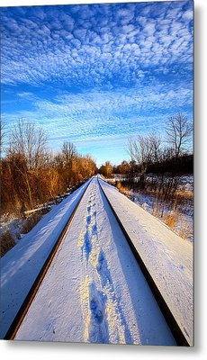 Staying Within The Lines Metal Print by Phil Koch