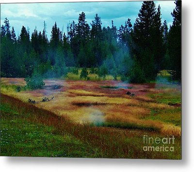 Steam Marsh Metal Print by Larry Campbell
