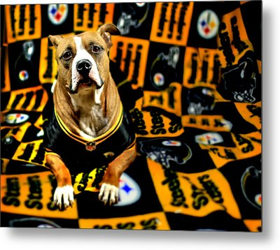 Pitbull Rescue Dog Football Fanatic Metal Print by Shelley Neff