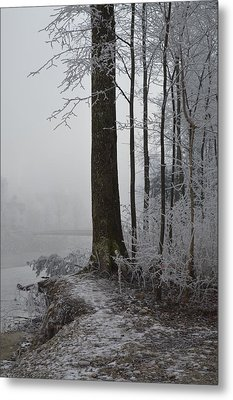 Steep And Frost Metal Print