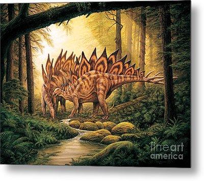 Stegosaurus Pair In Forest Metal Print