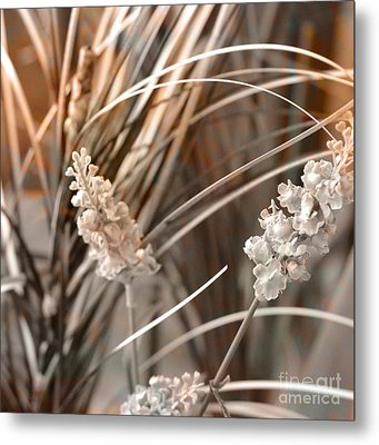 Stems IIi Metal Print