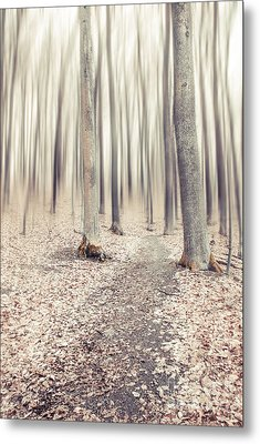 Steppin' Through The Last Days Of Autumn Metal Print by Hannes Cmarits