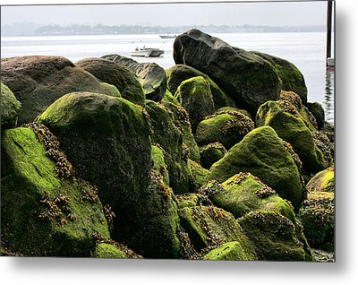 Stepping Stones Park Metal Print by JC Findley