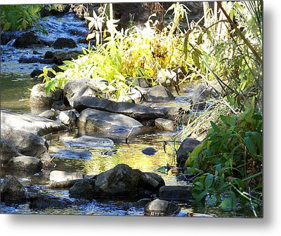 Stepping Stones Metal Print by Sheri Keith