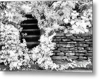 Steps And Stones Metal Print by Jeff Holbrook