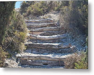 Steps In The Woods Metal Print by George Katechis