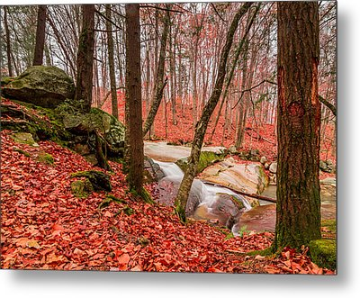 Metal Print featuring the photograph Stickney Brook 2 by Jeremy Farnsworth