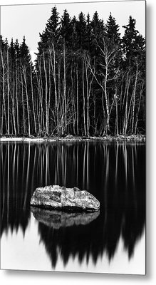 Sticks And Stones Metal Print