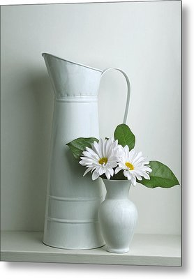 Metal Print featuring the photograph Still Life With Daisy Flowers by Krasimir Tolev
