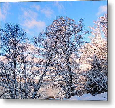 Still Of Winter Metal Print