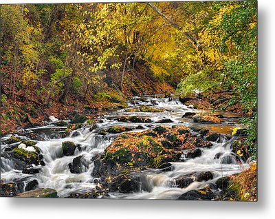 Still River Rapids Metal Print by Bill Wakeley