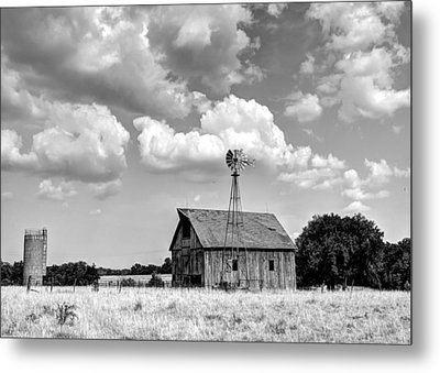 Still Standing Proud Metal Print by Jean Hutchison