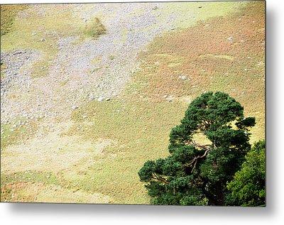 Stillness. Wicklow Mountains. Ireland Metal Print by Jenny Rainbow