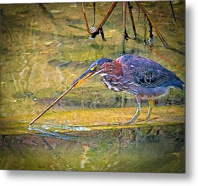 Stirring The Waters Metal Print