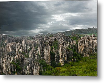 Stone Forest Metal Print