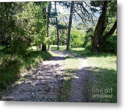 Metal Print featuring the photograph Stone Path by Ramona Matei