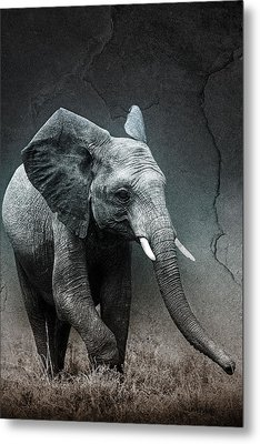 Stone Texture Elephant Metal Print