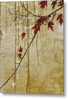 Stone Walled Metal Print