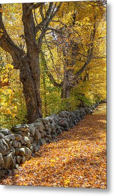 Stonewall In Autumn Metal Print by Donna Doherty