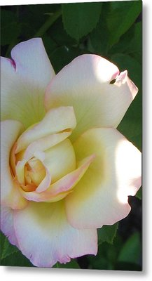 Stop And Smell Metal Print