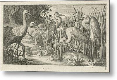 Storks And Ducks At A Pond, Jan Van Londerseel Metal Print by Jan Van Londerseel