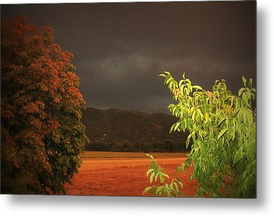 Storm Coming Metal Print by Flow Fitzgerald