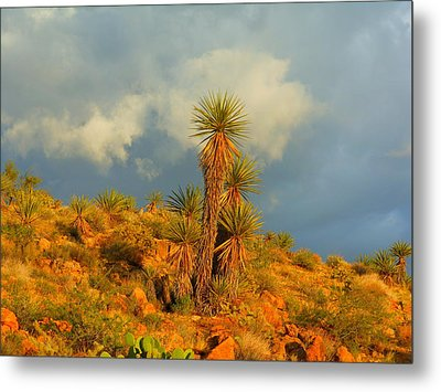 Storm In The Desert Metal Print