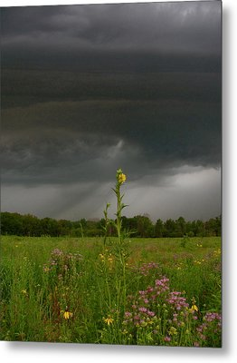 Storm Is Nigh Metal Print by Tim Good