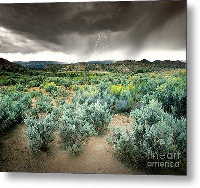 Storms Never Last Metal Print by Edmund Nagele