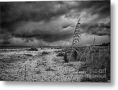 Stormy Seas Metal Print by Anne Rodkin