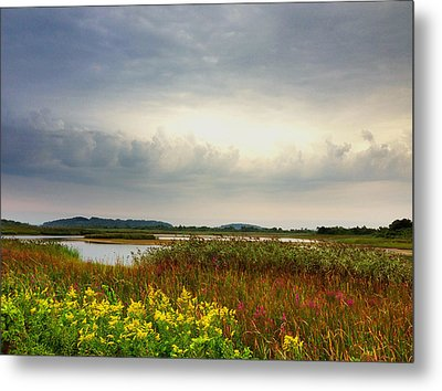 Stormy Skies Metal Print by Nancy Landry