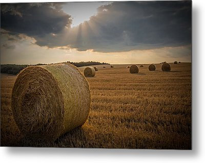 Straw Bales And Sunrays  Metal Print by David Dehner