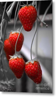Strawberries Metal Print