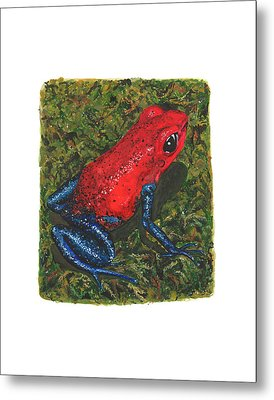 Strawberry Poison Dart Frog Metal Print by Cindy Hitchcock