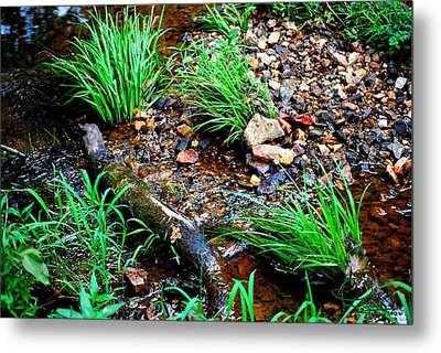 Metal Print featuring the photograph Stream By The Trail by Ludwig Keck