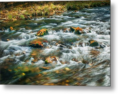 Stream Fall Colors Great Smoky Mountains Painted  Metal Print