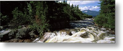 Stream Flowing Through A Forest, Little Metal Print by Panoramic Images