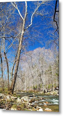 Metal Print featuring the photograph Stream In Spring Montgomery County Pennsylvania by A Gurmankin