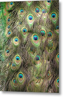 Metal Print featuring the photograph Stream Of Eyes by Diane Alexander
