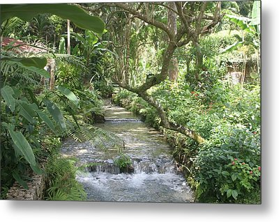 Stream Of Life Metal Print by Dervent Wiltshire