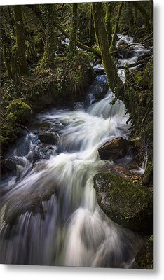 Metal Print featuring the photograph Stream On Eume River Galicia Spain by Pablo Avanzini